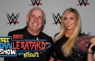 Ric-Flair-Sets-Record-Straight-Over-Bar-Altercation-Dan-Le-Batard-Show-attachment