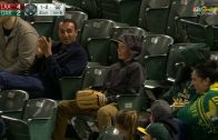 A-youngster-makes-a-nice-snag-on-a-foul-ball-attachment