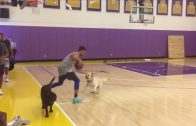 Klay-Thompson-challenges-dog-to-one-on-one-game-ESPN-attachment